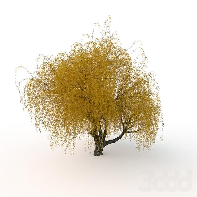 willow_v2