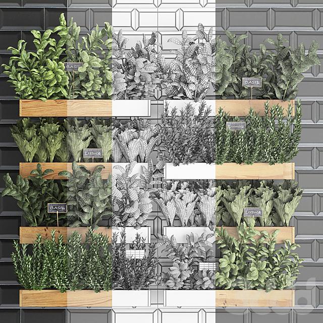 Вертикальное озеленение. 37