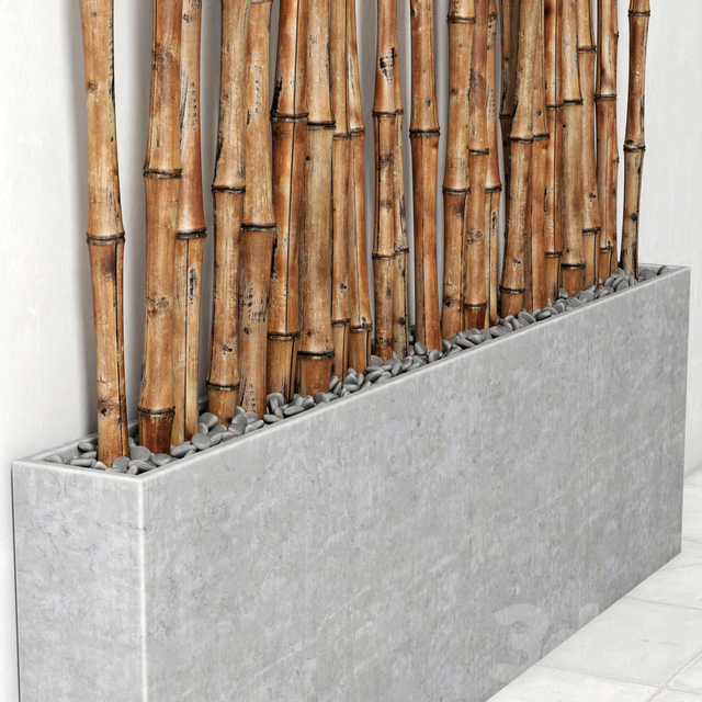 Кашпо с бамбуком / Planter with bamboo