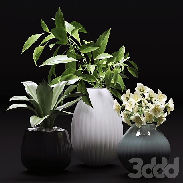 Букет цветов в вазе 36