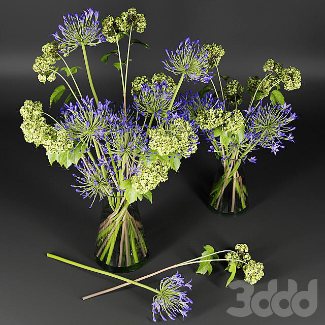 Букет с ветками цветущей бузины и фиолетовыми соцветиями