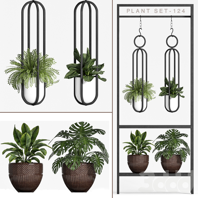 plant set-124