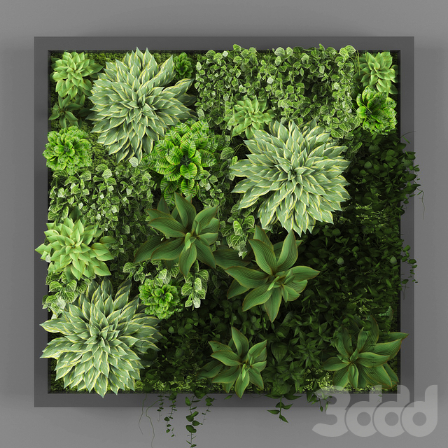 Vertical garden 029