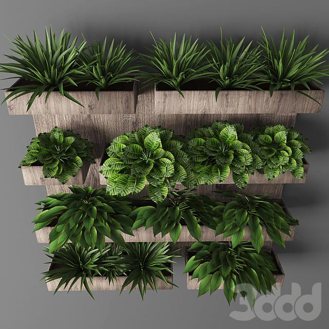 Vertical garden 032