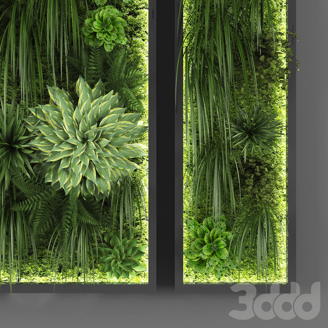 Vertical garden 046