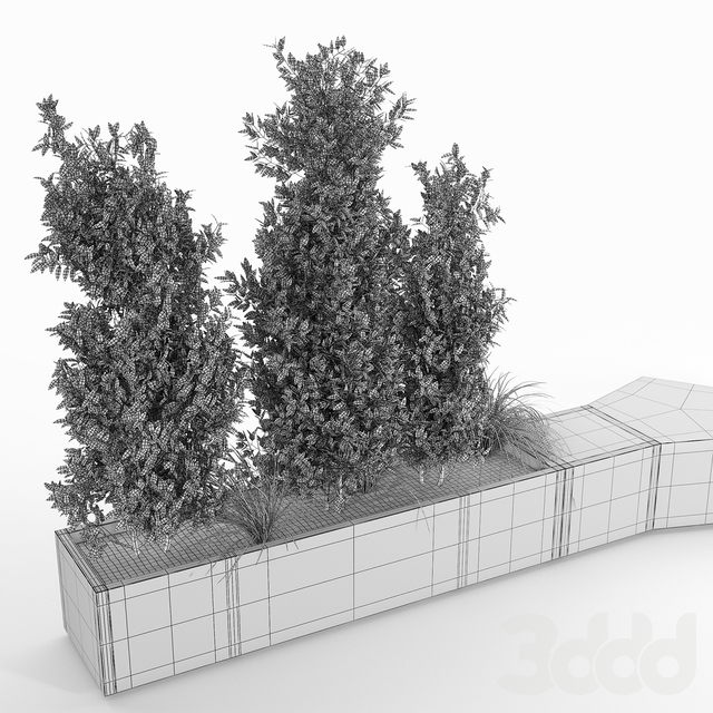 BOX PLANTER