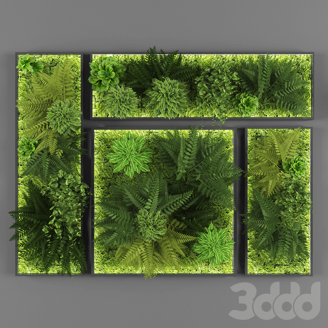 Vertical garden 052