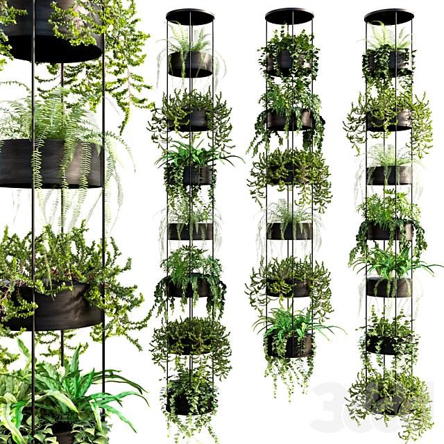 Vertical garden_18