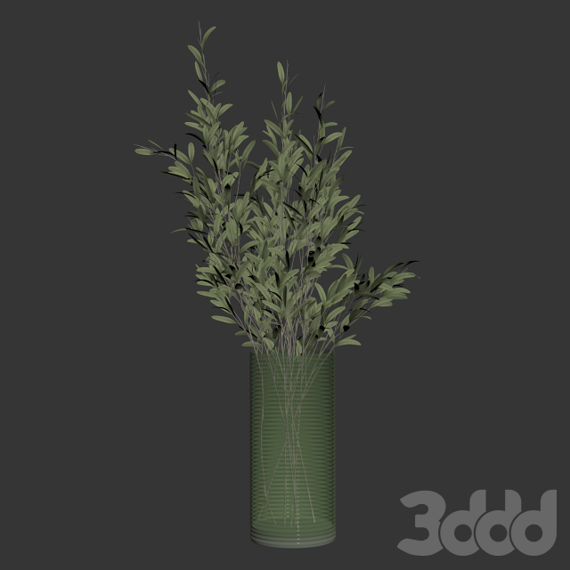 Olive stems in simple glass ribbed vase
