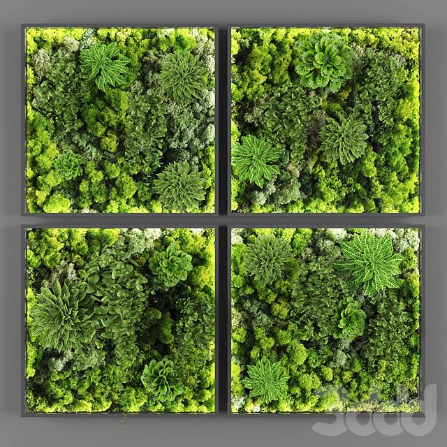 Vertical garden 071