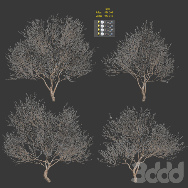 Набор оливковых деревьев. 4 модели