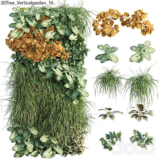 Verticalgarden - Green wall 10