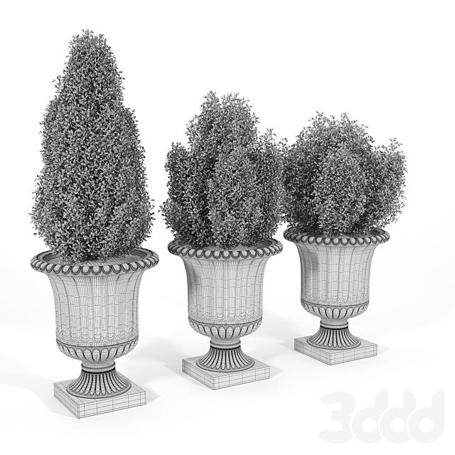 Crawfordsland Metal Pot Planter 02