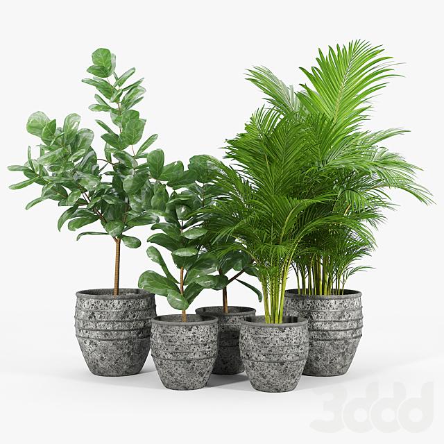 Knisely 2-Piece Pot Planter Set 01
