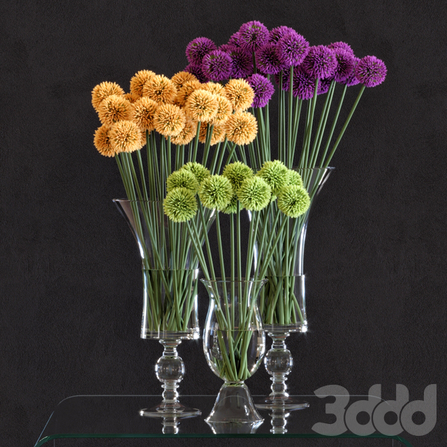 Flower Arrangement: Allium Set1
