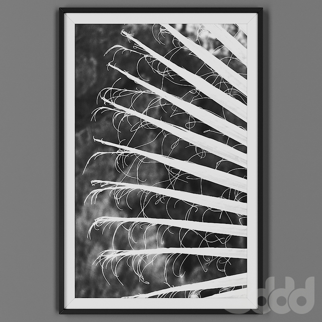 Picture frame 00032-42