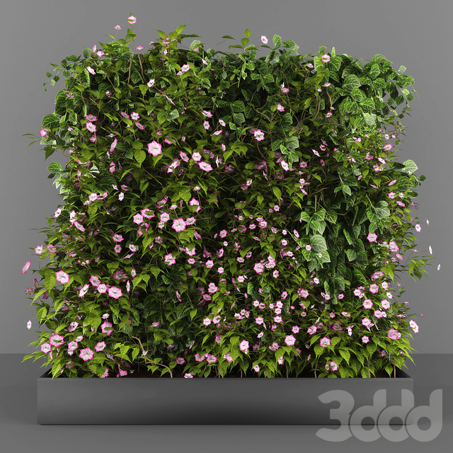 Vertical garden 078