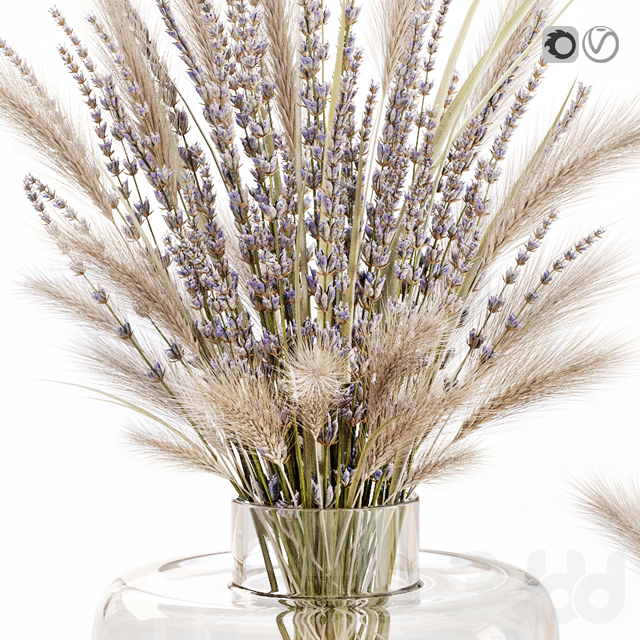 Dry flowers in glass vase with lavender