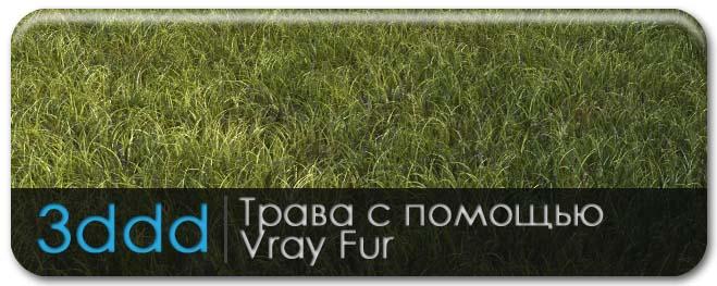tutor_grass_1.jpg
