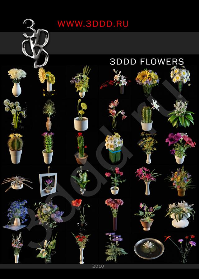 3ddd_flowers.jpg